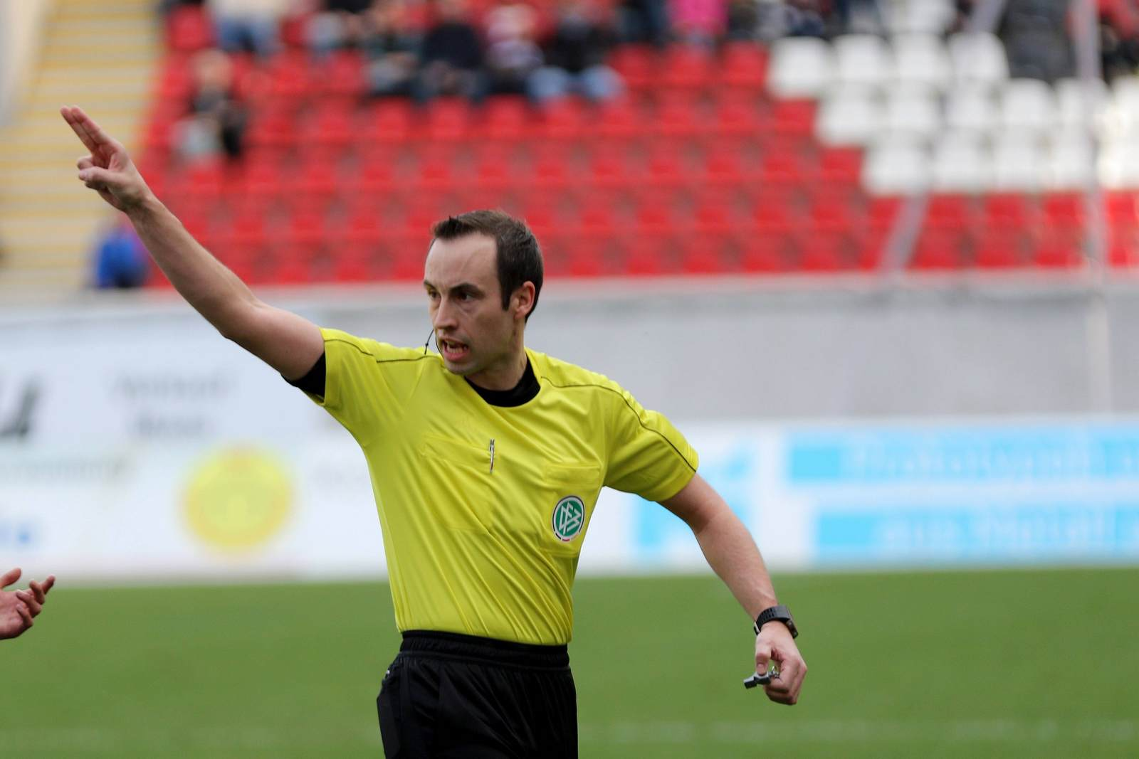 DFB-Schiedsrichter Patrick Alt