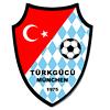 Türkgücü Logo